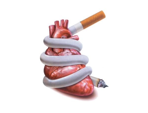 Kẻ thù của hệ tim mạch mang tên thuốc lá